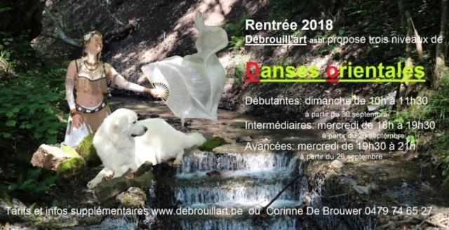 Danse orientale Débrouill'Art 2018